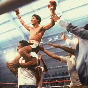 Boxers Triumph